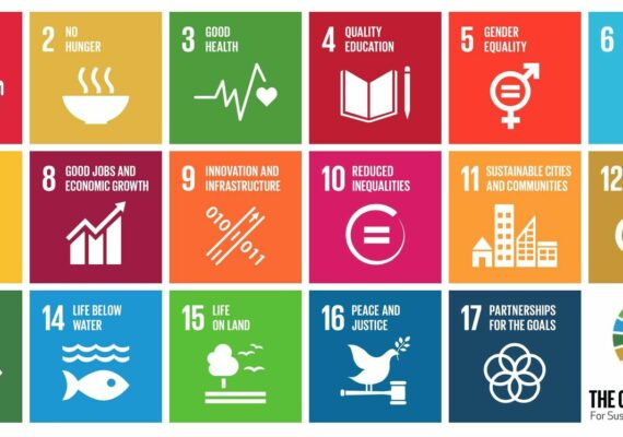 Global Goals in DOme-X